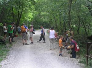 Pohod v dolino Glinščice